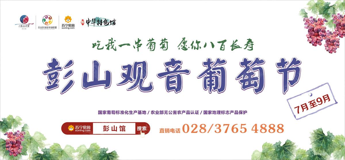 彭山葡萄节营销活动策划