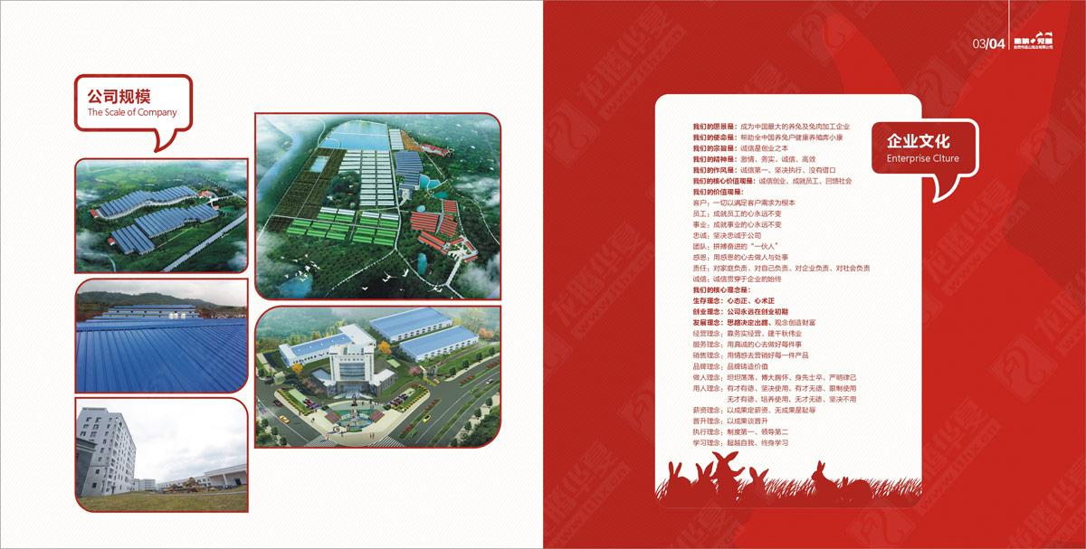 品山兔业宣传画册设计