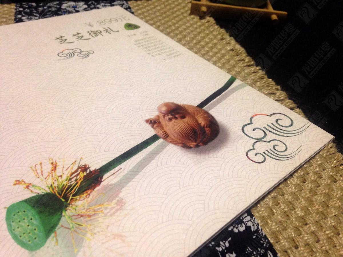芝芝端午粽子画册设计|粽子宣传画册设计|粽子端午节画册设计