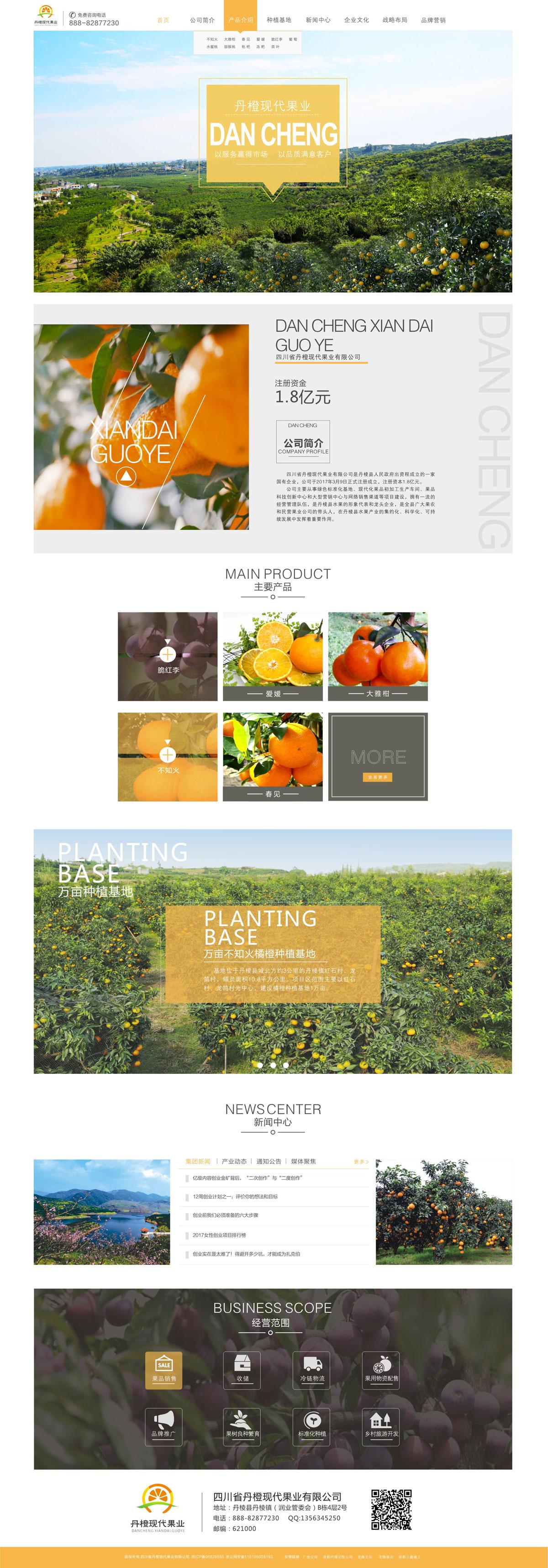 丹橙现代果业公司官网设计及技术实现_果业公司网站建设_果业公司网站设计