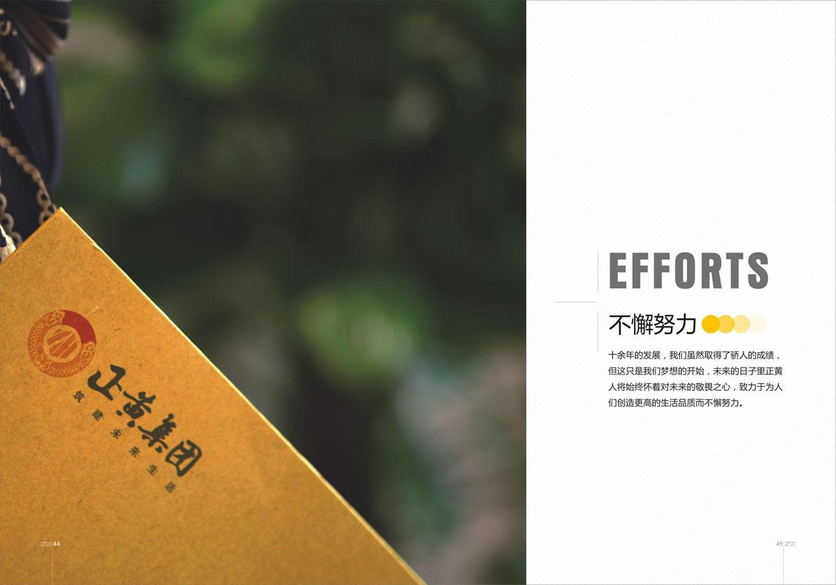 正黄集团企业形象宣传画册设计_成都集团形象宣传画册设计公司